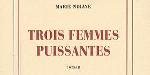 Trois femmes puissantes, prix Goncourt 2009