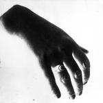 Main de Mme Steinheil, photographie de presse, Rol, 1909