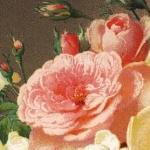 Henri Émery, La Vie végétale, 1878