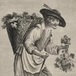 Un homme portant sur le dos une hotte pleine de raisins