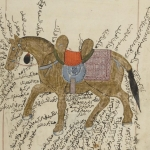 Manuscrit arabe, Traité des chevaux, 1670