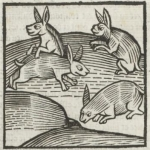 Phébus, des Déduiz de la chasse des bestes sauvaiges et des oyseaux de proye, 1507