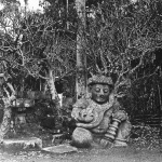 Molteni, Raçsa, monstre hindou à Java, 1885-1890
