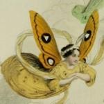 Amédée Varin, Les Papillons, métamorphoses terrestres des peuples de l'air, 1862