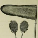 Les Papillons, métamorphoses terrestres des peuples de l'air, 1862