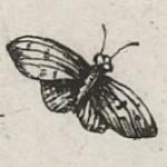 Alexandre Vivot, Bouquets et tiges d'orfèvrerie, 1636