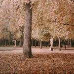 Parc du Château de Versailles, 1907-1920