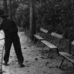 L'Automne : la chute des feuilles, 1936