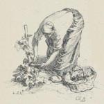 Dessin de Léon Lhermitte pour la Vie rustique