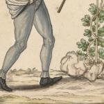 Un vigneron, collection Gaignières