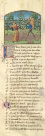 Roman de la Rose, Manuscrit Français 24392
